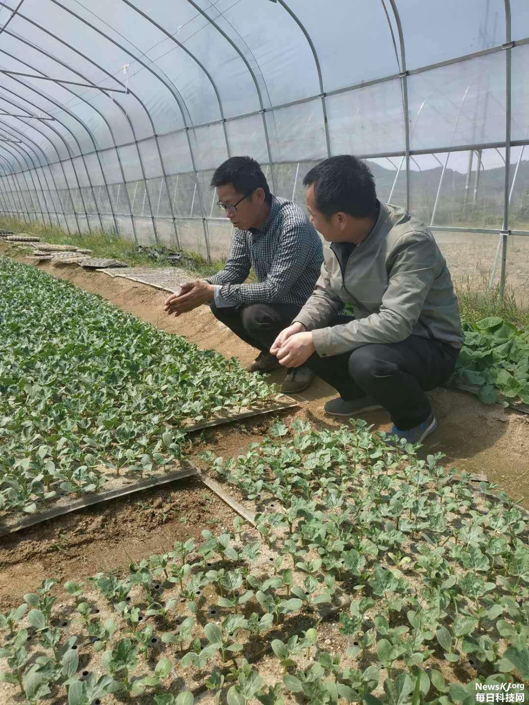 黄冈市农科院科技专家团队赴罗田县开展科技助力